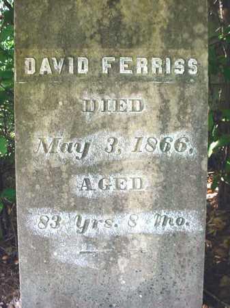 FERRISS, DAVID - Warren County, New York | DAVID FERRISS - New York Gravestone Photos
