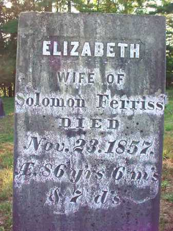 FERRISS, ELIZABETH - Warren County, New York | ELIZABETH FERRISS - New York Gravestone Photos