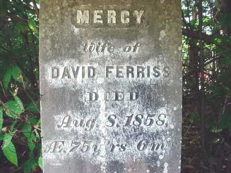 FERRISS, MERCY - Warren County, New York | MERCY FERRISS - New York Gravestone Photos