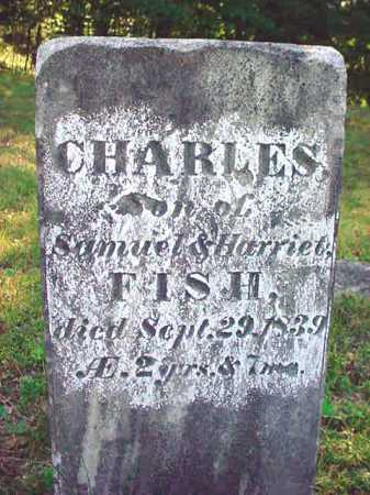 FISH, CHARLES - Warren County, New York | CHARLES FISH - New York Gravestone Photos