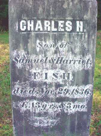 FISH, CHARLES H - Warren County, New York | CHARLES H FISH - New York Gravestone Photos