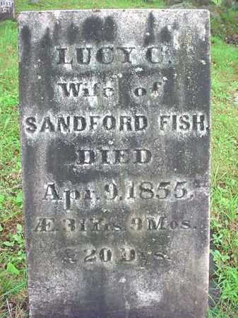 FISH, LUCY C - Warren County, New York | LUCY C FISH - New York Gravestone Photos