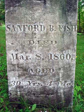 FISH, SANFORD B - Warren County, New York | SANFORD B FISH - New York Gravestone Photos