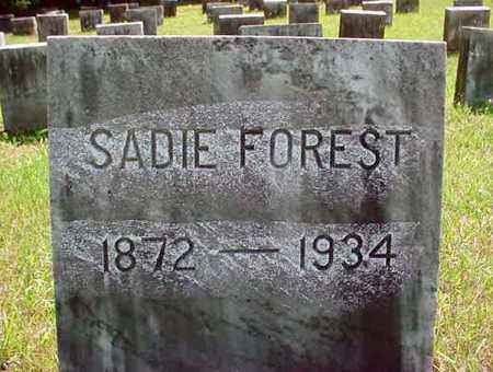 FOREST, SADIE - Warren County, New York   SADIE FOREST - New York Gravestone Photos