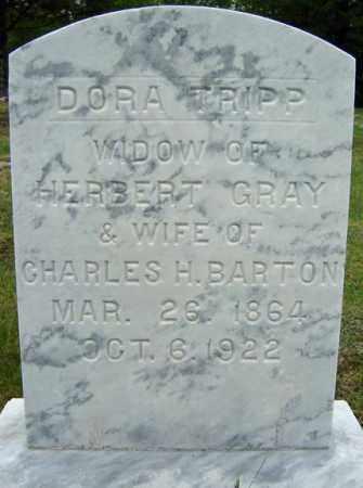 GRAY, DORA - Warren County, New York | DORA GRAY - New York Gravestone Photos