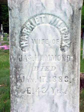 WILCOX, HARRIET - Warren County, New York | HARRIET WILCOX - New York Gravestone Photos