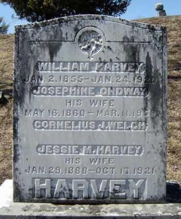 HARVEY, JOSEPHINE - Warren County, New York | JOSEPHINE HARVEY - New York Gravestone Photos
