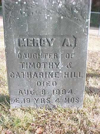 HILL, MERCY A - Warren County, New York | MERCY A HILL - New York Gravestone Photos
