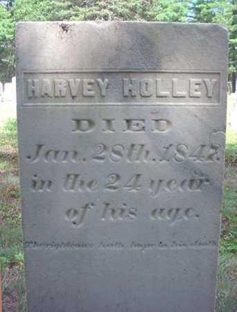 HOLLEY, HARVEY - Warren County, New York | HARVEY HOLLEY - New York Gravestone Photos