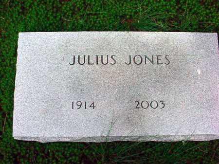 JONES, JULIUS - Warren County, New York | JULIUS JONES - New York Gravestone Photos