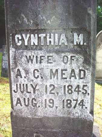MEAD, CYNTHIA M - Warren County, New York | CYNTHIA M MEAD - New York Gravestone Photos