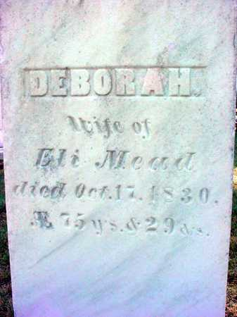 BRUSH MEAD, DEBORAH - Warren County, New York | DEBORAH BRUSH MEAD - New York Gravestone Photos