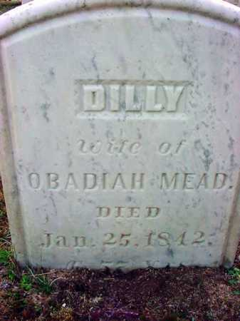 MEAD, ALLA DILLY - Warren County, New York | ALLA DILLY MEAD - New York Gravestone Photos