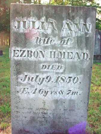 MEAD, JULIA ANN - Warren County, New York | JULIA ANN MEAD - New York Gravestone Photos