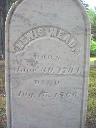 MEAD, LEWIS - Warren County, New York | LEWIS MEAD - New York Gravestone Photos
