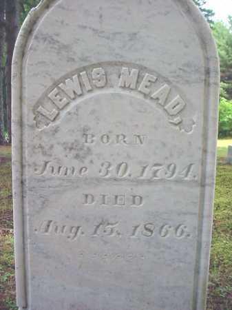 MEAD, LEWIS - Warren County, New York | LEWIS MEAD - New York Gravestone Photos