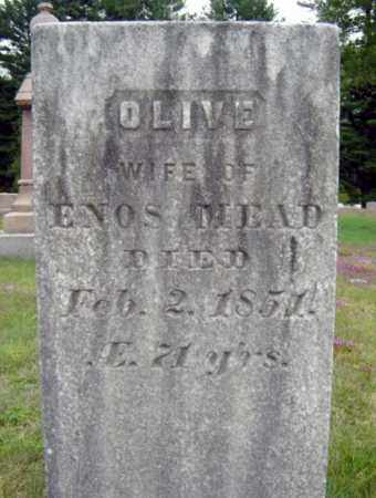 MEAD, OLIVE - Warren County, New York | OLIVE MEAD - New York Gravestone Photos