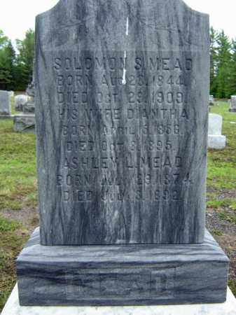 MEAD, DIANTHA - Warren County, New York | DIANTHA MEAD - New York Gravestone Photos
