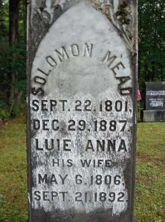 MEAD, SOLOMON - Warren County, New York | SOLOMON MEAD - New York Gravestone Photos