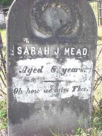 MEAD, SARAH J - Warren County, New York | SARAH J MEAD - New York Gravestone Photos