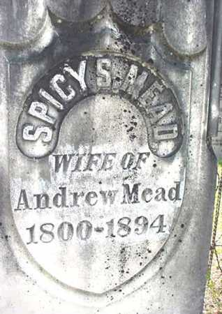 MEAD, SPICY S - Warren County, New York | SPICY S MEAD - New York Gravestone Photos