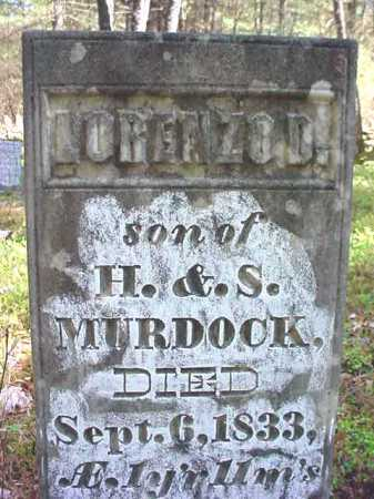 MURDOCK, LORENZO D. - Warren County, New York | LORENZO D. MURDOCK - New York Gravestone Photos