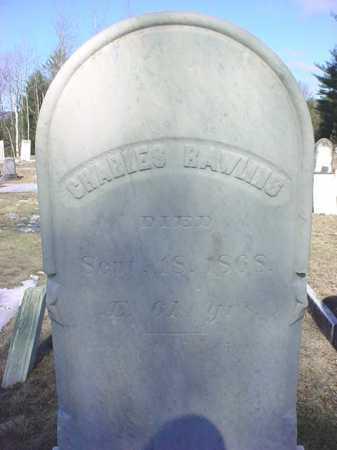 RAWLINS, CHARLES - Warren County, New York | CHARLES RAWLINS - New York Gravestone Photos