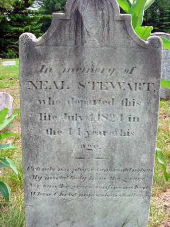 STEWART, NEAL - Warren County, New York | NEAL STEWART - New York Gravestone Photos
