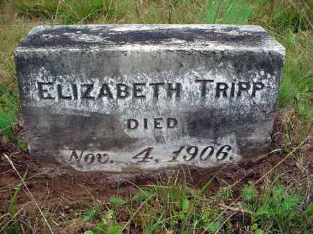 TRIPP, ELIZABETH - Warren County, New York | ELIZABETH TRIPP - New York Gravestone Photos