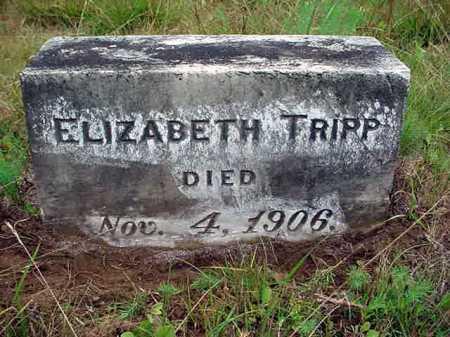 TRIPP, ELIZABETH - Warren County, New York   ELIZABETH TRIPP - New York Gravestone Photos