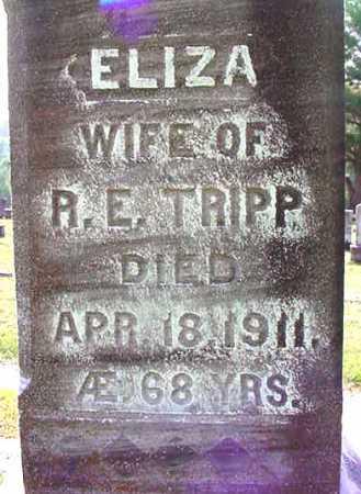 TRIPP, ELIZA - Warren County, New York   ELIZA TRIPP - New York Gravestone Photos