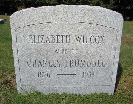 WILCOX, ELIZABETH - Warren County, New York | ELIZABETH WILCOX - New York Gravestone Photos