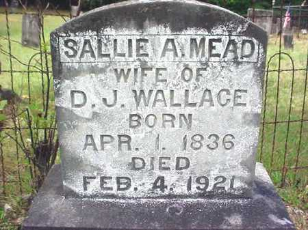 MEAD WALLACE, SALLIE A - Warren County, New York | SALLIE A MEAD WALLACE - New York Gravestone Photos