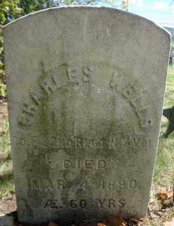 WELLS, CHARLES - Warren County, New York | CHARLES WELLS - New York Gravestone Photos
