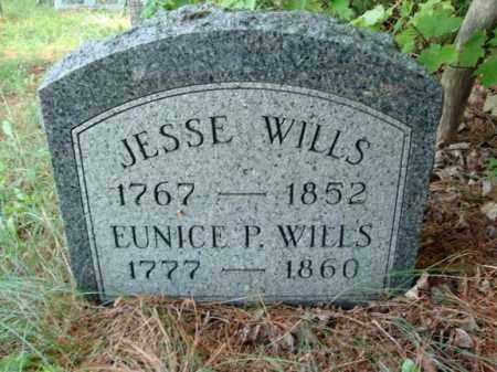 WELLS, EUNICE P - Warren County, New York | EUNICE P WELLS - New York Gravestone Photos