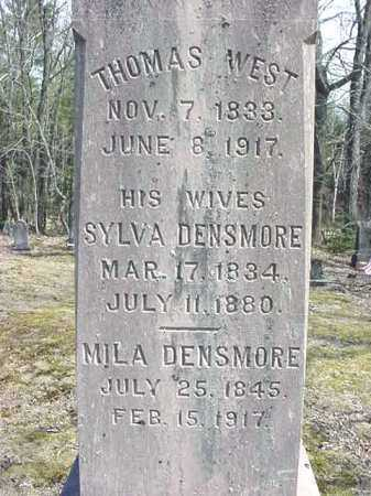 DENSMORE, SYLVIA - Warren County, New York | SYLVIA DENSMORE - New York Gravestone Photos