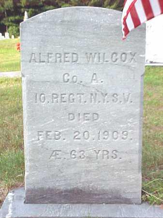 WILCOX, ALFRED - Warren County, New York | ALFRED WILCOX - New York Gravestone Photos