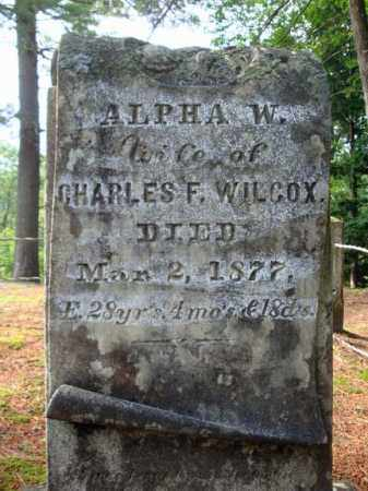 WILCOX, ALPHA W - Warren County, New York | ALPHA W WILCOX - New York Gravestone Photos