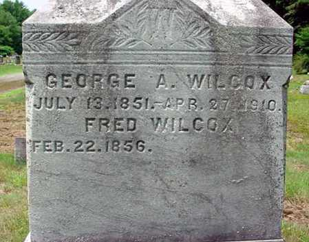 WILCOX, FRED - Warren County, New York | FRED WILCOX - New York Gravestone Photos