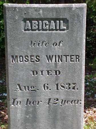 WINTER, ABIGAIL - Warren County, New York   ABIGAIL WINTER - New York Gravestone Photos