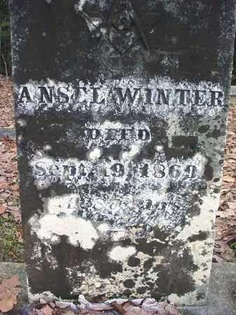 WINTER, ANSEL - Warren County, New York | ANSEL WINTER - New York Gravestone Photos