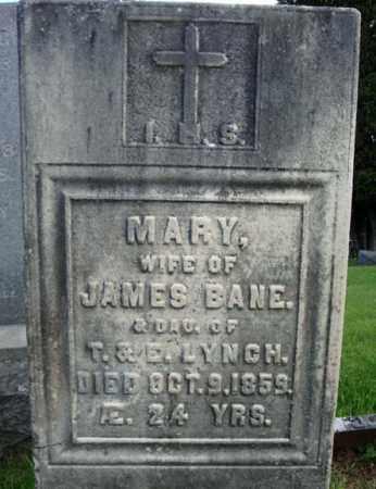 LYNCH, MARY - Washington County, New York | MARY LYNCH - New York Gravestone Photos
