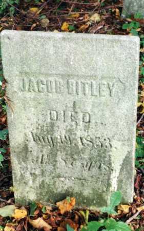 BITLEY, JACOB - Washington County, New York | JACOB BITLEY - New York Gravestone Photos