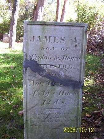BRISTOL, JAMES - Washington County, New York   JAMES BRISTOL - New York Gravestone Photos