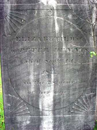 DENNIS, ELIZABETH - Washington County, New York   ELIZABETH DENNIS - New York Gravestone Photos
