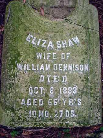 SHAW DENNISON, ELIZA - Washington County, New York   ELIZA SHAW DENNISON - New York Gravestone Photos