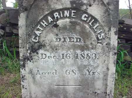 GILLIS, CATHARINE - Washington County, New York | CATHARINE GILLIS - New York Gravestone Photos