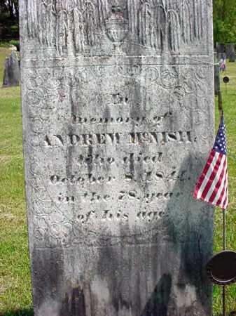 MCNISH (RW), ANDREW - Washington County, New York | ANDREW MCNISH (RW) - New York Gravestone Photos