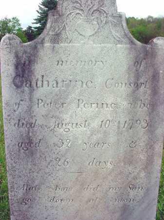 PERINE, CATHARINE - Washington County, New York   CATHARINE PERINE - New York Gravestone Photos