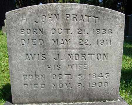 NORTON PRATT, AVIS J - Washington County, New York | AVIS J NORTON PRATT - New York Gravestone Photos